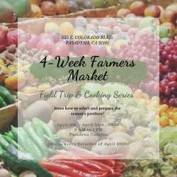 The image for Farmers' Market Week 2