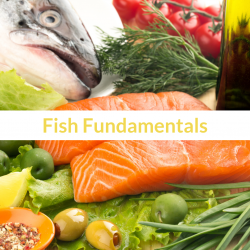 The image for Fish Fundamentals